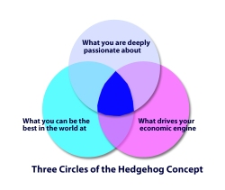 Jim Collins' Hedgehog Concept